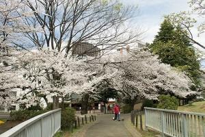 戸山公園3