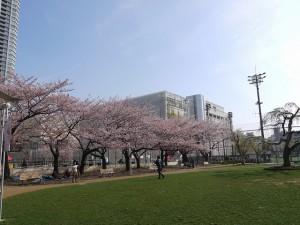 錦糸公園3