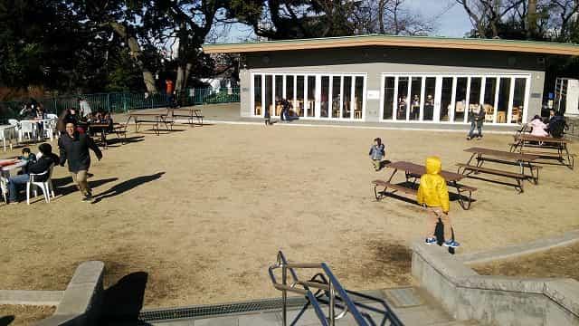 横浜市立野毛山公園 野毛山動物園 ひだまり広場・ひだまりカフェ