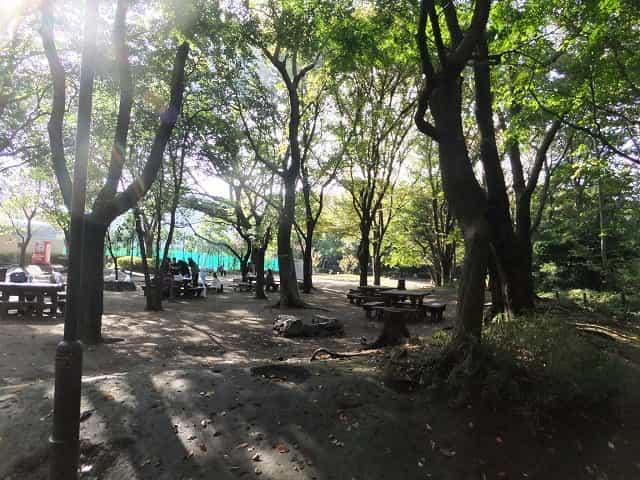 駒場野公園 デイキャンプ場