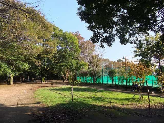 駒場野公園 駒場体育館・テニスコート