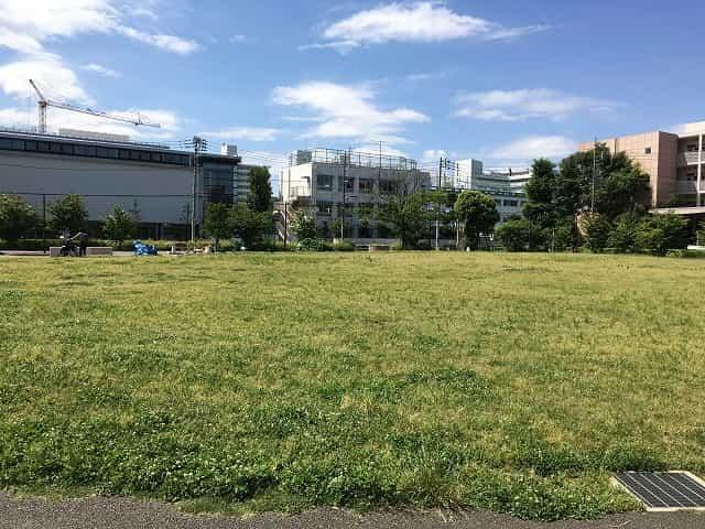 東山公園 草はら広場