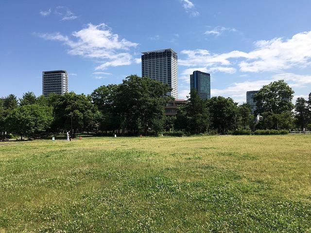 草はら広場