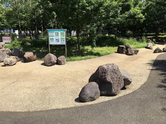 東山公園 じゃぶじゃぶ池