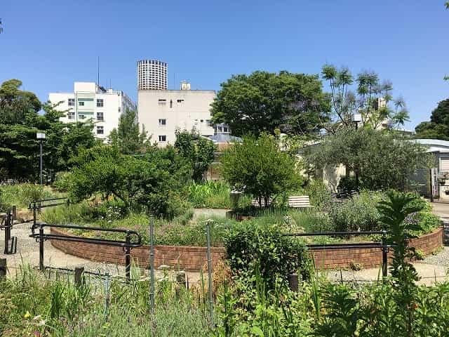 中目黒公園 五感の庭