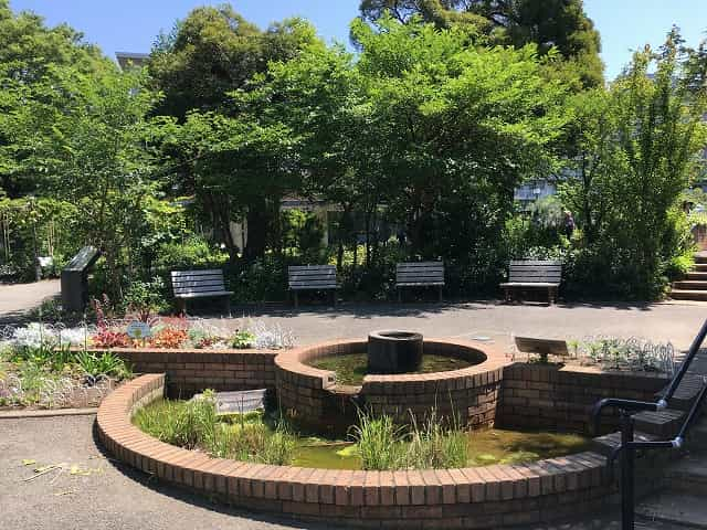 中目黒公園 やすらぎの泉
