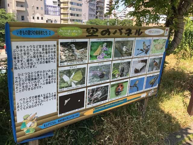 中目黒公園 パネル 空のパネル