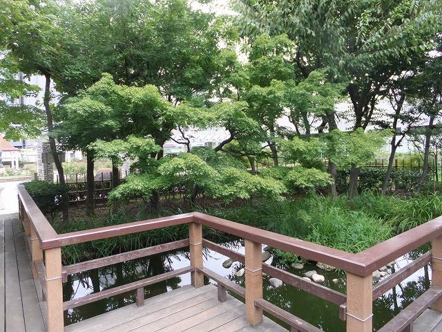 本郷給水所公苑 和風庭園