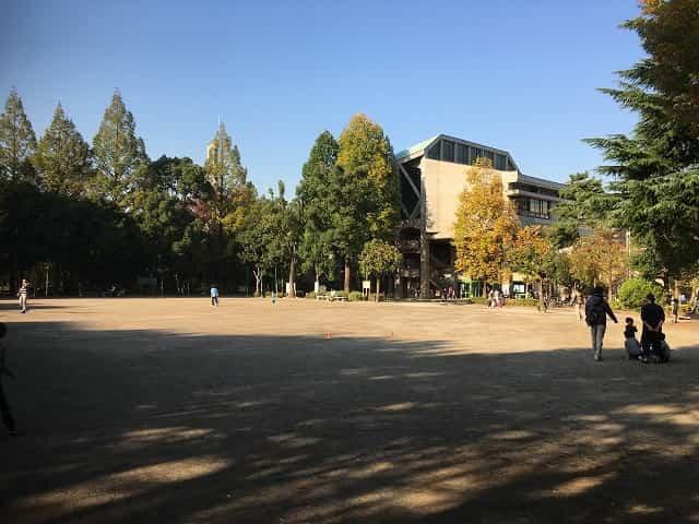 教育の森公園 自由広場