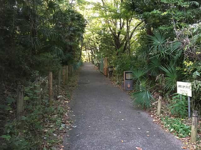 教育の森公園 占春園
