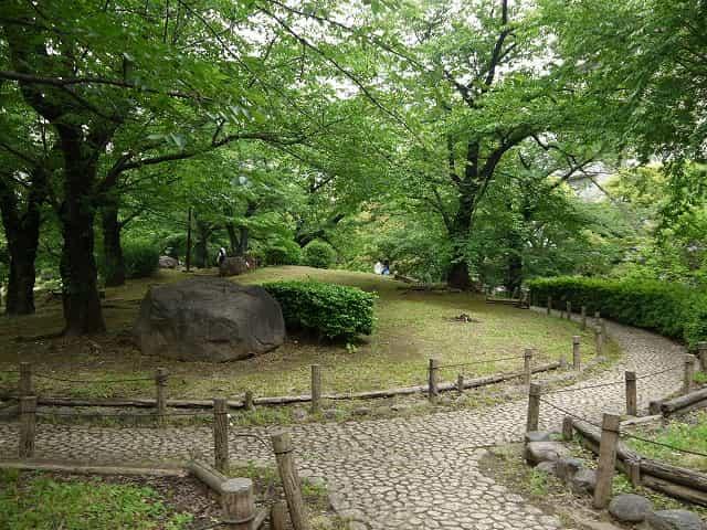 隅田公園(墨田区) 花見広場