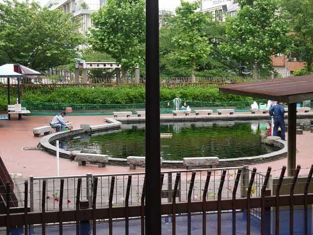 隅田公園(墨田区) 魚つり場