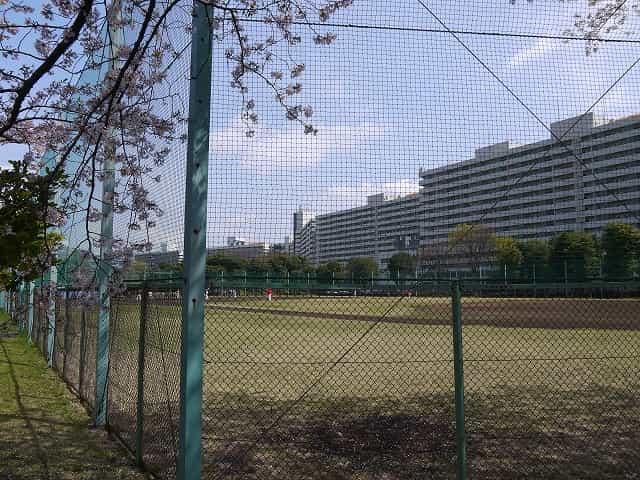 東白鬚公園 野球場・テニスコート