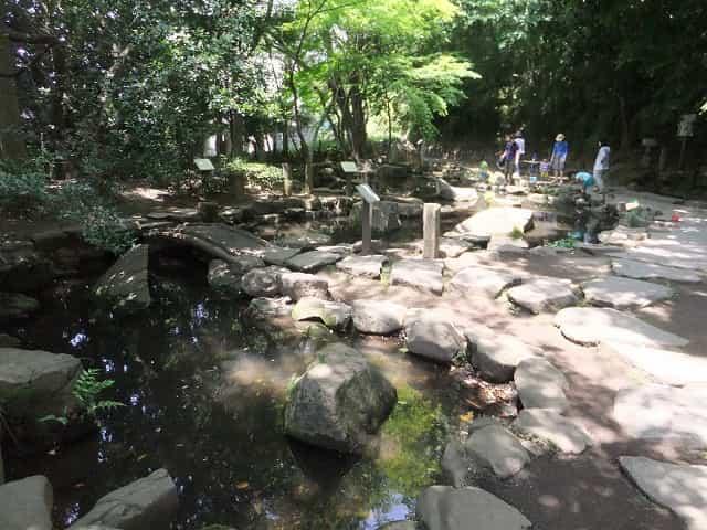 哲学堂公園 唯心庭