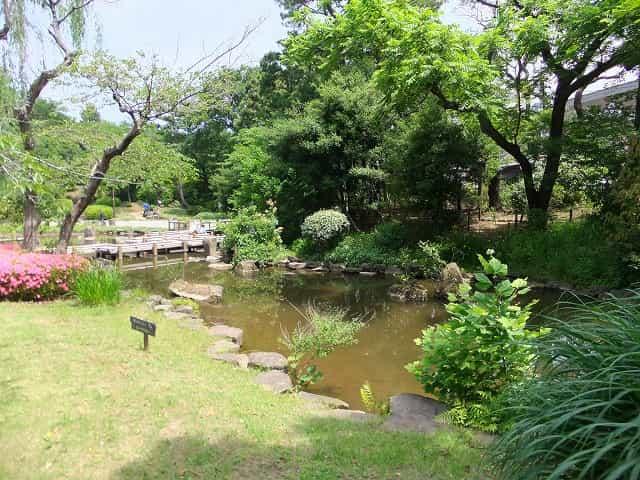哲学堂公園 菖蒲池