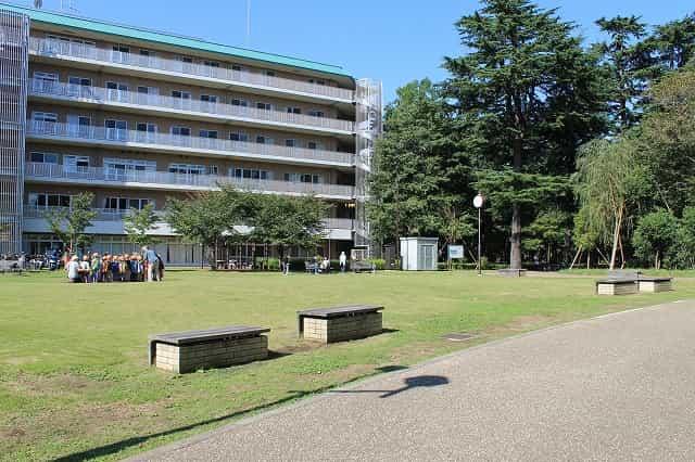 江古田の森公園 芝生広場