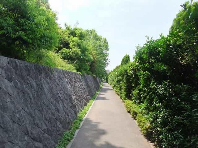 江古田の森公園 ジョギング・散歩