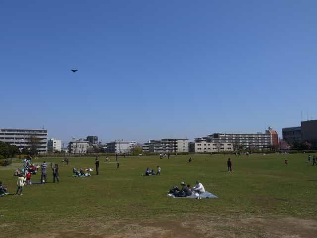 平和の森公園 芝生広場