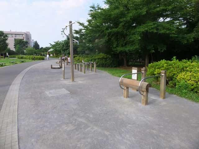 平和の森公園 トリムの広場