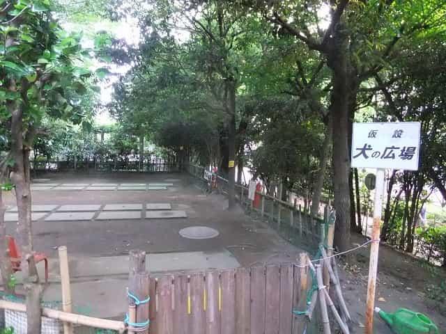 平和の森公園 ドックラン