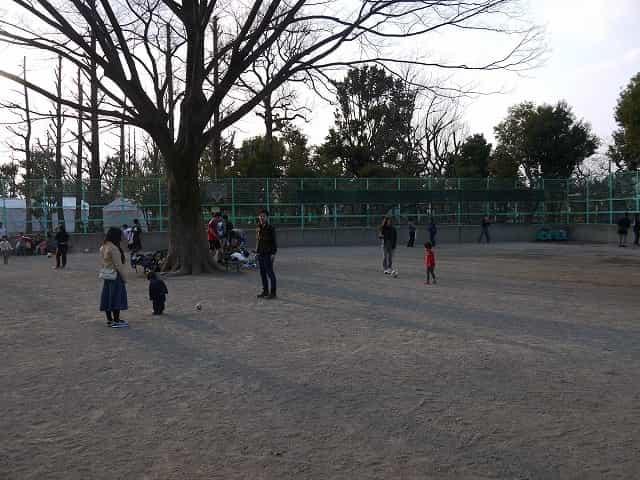 羽根木公園 球戯広場