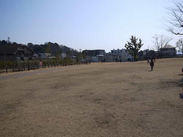二子玉川公園 草広場