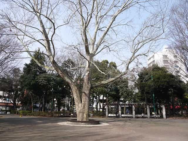 蚕糸の森公園 つどいの広場