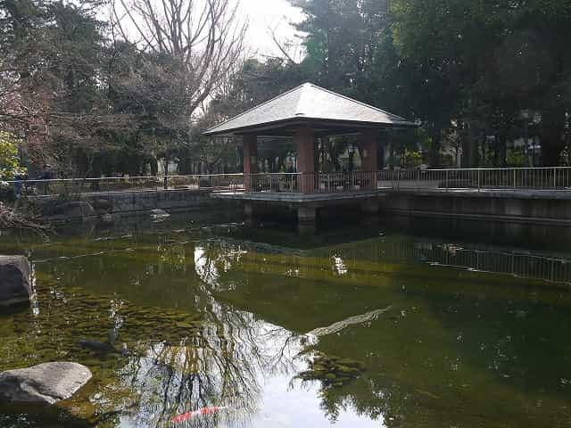 蚕糸の森公園 いこいの広場