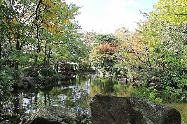 井草森公園 森と水のゾーン