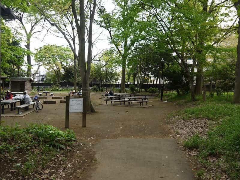 林試の森公園 デイキャンプ場