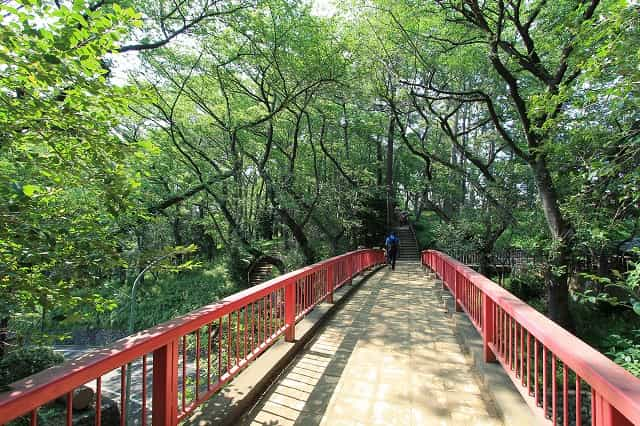 多摩川台公園 虹の橋