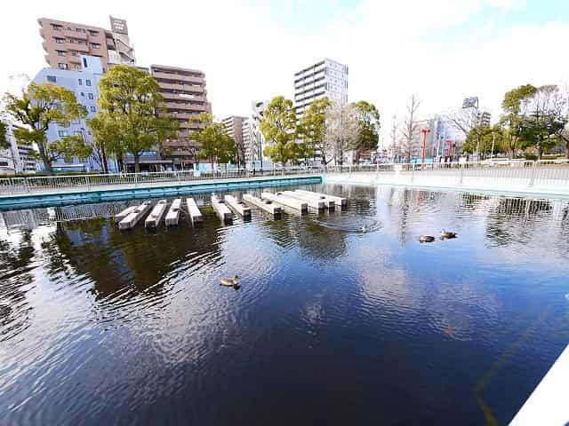 木場公園 入口広場・噴水広場