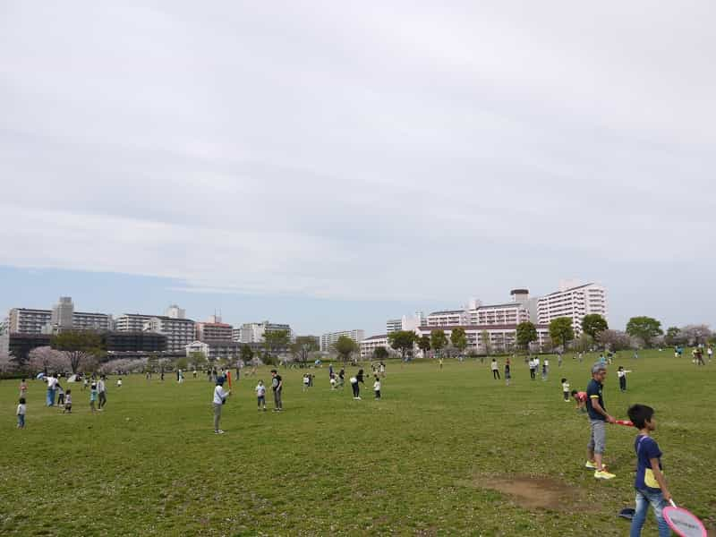 大島小松川公園 自由の広場
