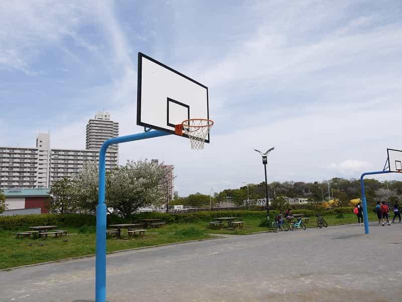 大島小松川公園 わんさか広場 バスケットリング