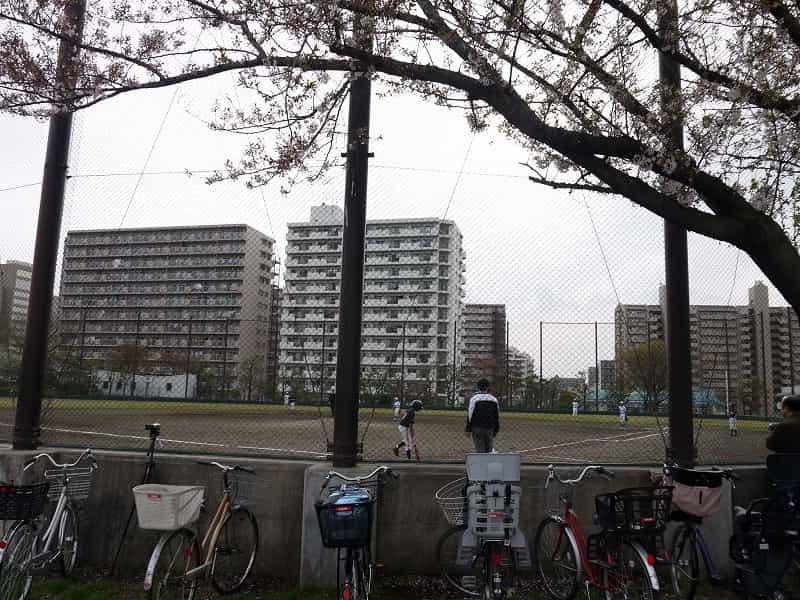 大島小松川公園 スポーツ広場 野球場