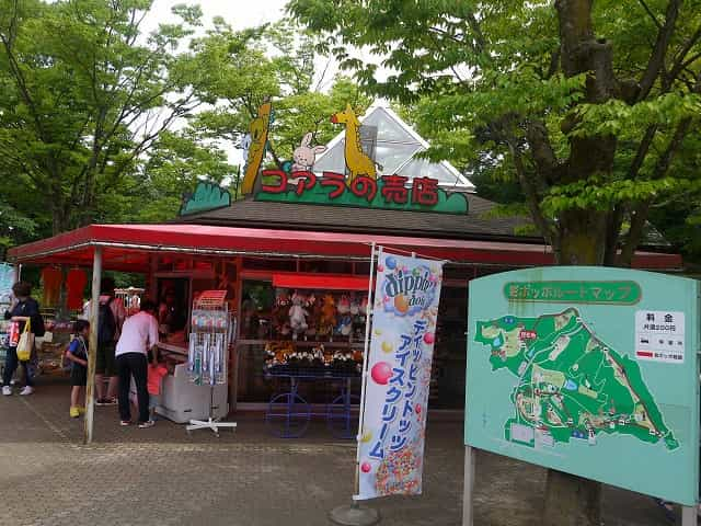 こども動物自然公園 コアラ売店
