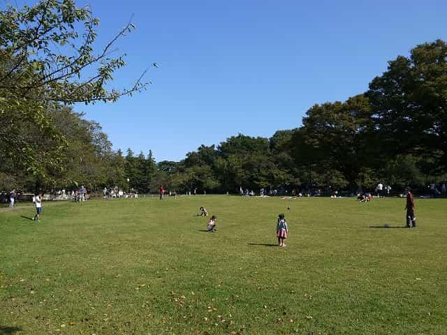 砧公園 ファミリーパーク