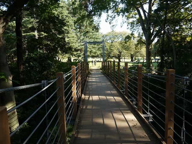 砧公園 吊り橋