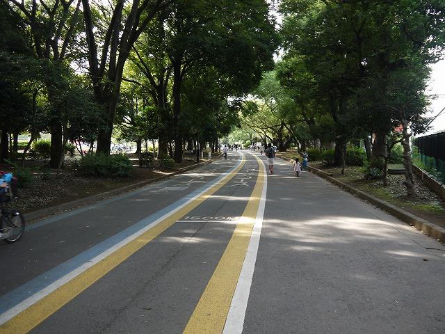 駒沢オリンピック公園 ジョギングコース ・サイクリングコース