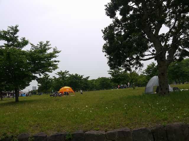 舎人公園 キャンプ広場