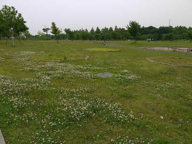 舎人公園 ゆうひの広場