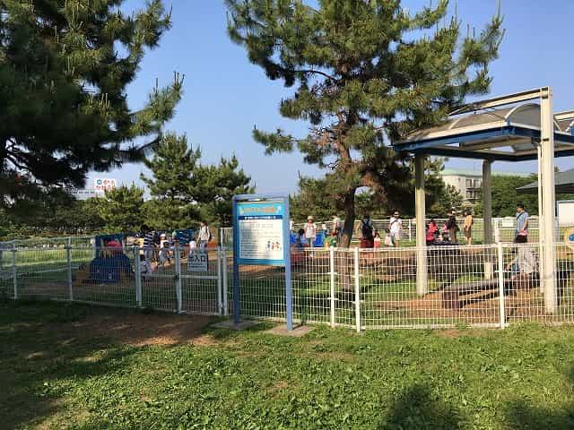 葛西臨海公園 わくわく広場