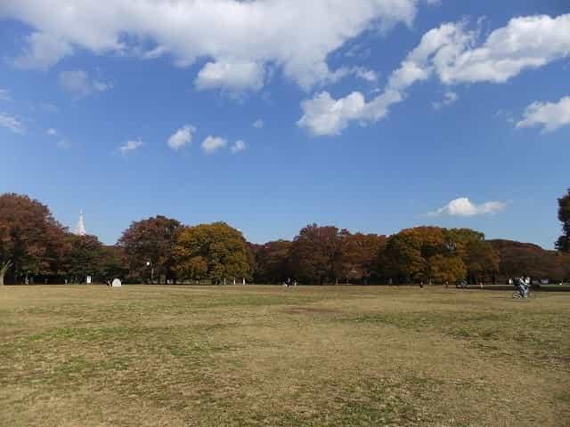 代々木公園 中央広場
