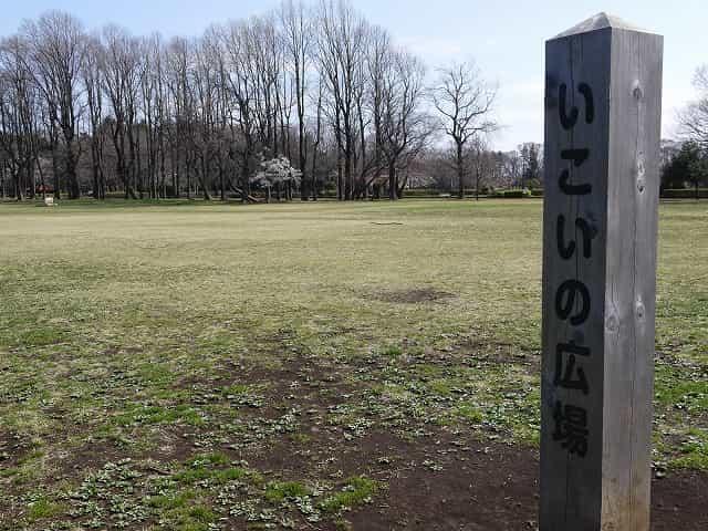 小金井公園 いこいの広場
