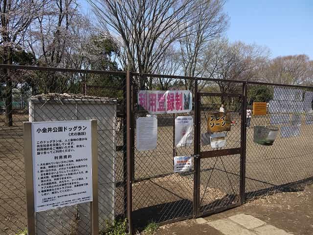 小金井公園 ドックラン
