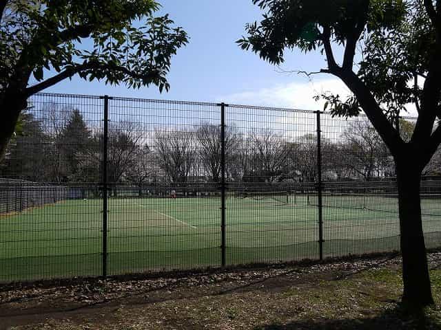 小金井公園 テニスコート