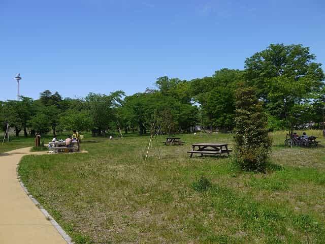 狭山公園  風の広場