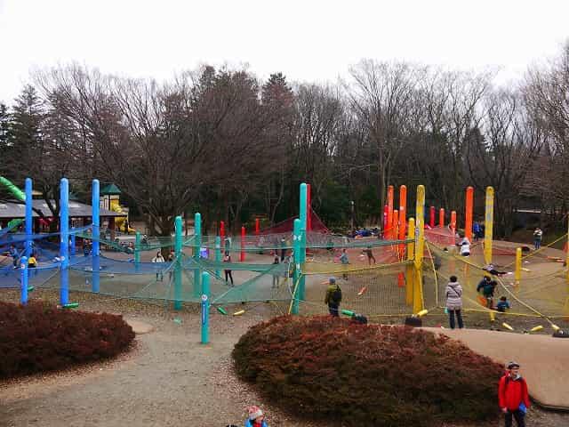 昭和記念公園 こどもの森 虹のハンモック