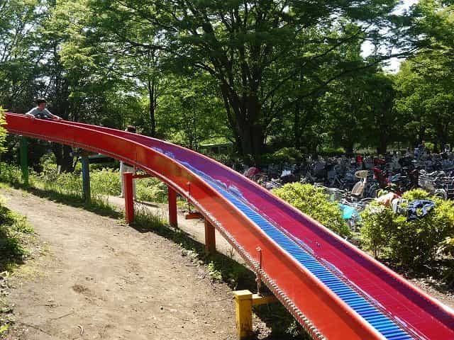 昭和記念公園 こどもの森 空のすべり台