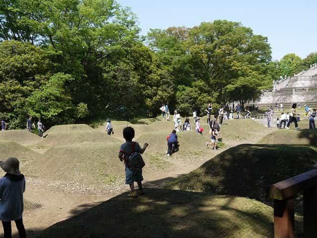 昭和記念公園 こどもの森 霧の森